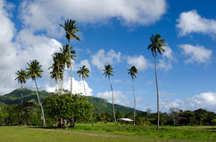 Landscape of Rarotonga Cook Islands Stock Image