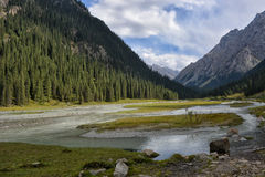 Landscape in ravine. Beautiful river and mountains in Kyrgistan Royalty Free Stock Photography