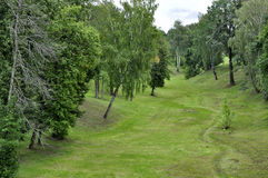Landscape ravine and forest Royalty Free Stock Photos