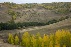 Landscape with ravine hills sky and autumn trees Stock Image