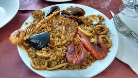 Landscape. The real and trully paella in spain royalty free stock photos