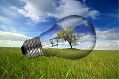 Landscape with recycled light bulb Stock Image