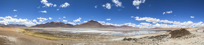 Landscape at Red lagoon, Bolivia Royalty Free Stock Photos