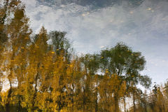 Landscape reflection in lake Royalty Free Stock Images