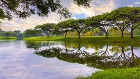 Landscape Reflection royalty free stock image