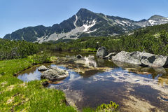 Landscape with Reflection of Sivrya peak in Banski lakes, Pirin Mountain Stock Image