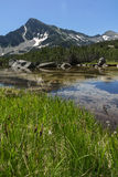 Landscape with Reflection of Sivrya peak in Banski lakes, Pirin Mountain Royalty Free Stock Photography
