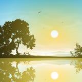 Landscape with Reflection. A Sunset, Sunrise Landscape with Trees and Reflection in Water Stock Image