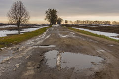 Landscape with remote empty road at late autumn Royalty Free Stock Photo