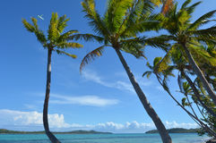 Landscape of a remote tropical beach in Fiji Royalty Free Stock Image