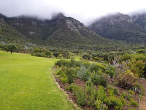 Landscape in Republic of South Africa - Kirstenbosh Royalty Free Stock Image