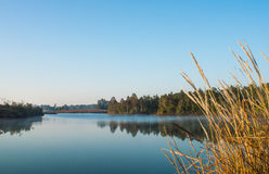Landscape of  reservoir Stock Photography