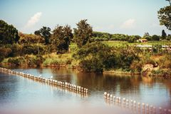 Landscape of Rhone river delta, Camargue Royalty Free Stock Photography