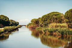 Landscape of Rhone river delta, Camargue Royalty Free Stock Image