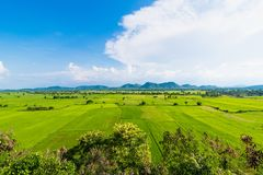 Landscape of the rice field with vague mountain behind.Thailand. Stock Photo