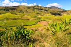 Landscape with rice fields in central Madagascar Stock Photos