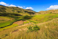 Landscape with rice fields in central Madagascar Royalty Free Stock Images