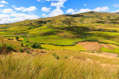 Landscape with rice fields in central Madagascar Stock Images