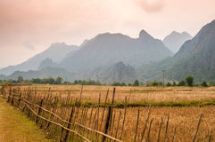 Landscape. Rice Fields in Laos Mountains Stock Images