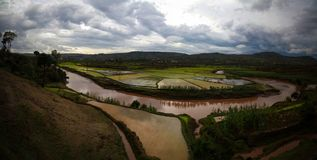 Landscape with the rice fields and Onive river at Antanifotsy,Madagascar. Landscape with the rice fields and Onive river at Antanifotsy in Madagascar stock image