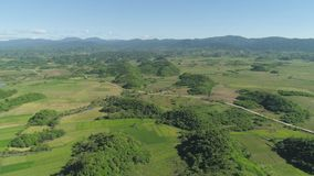 Landscape with rice terrace field. Philippines, Luzon. Aerial view of rice terrace, agricultural land of farmers. Tropical landscape with farmlands on Luzon stock video footage