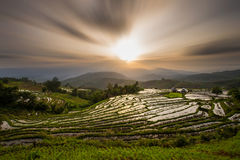 Landscape of Rice Terrace in Thailand Stock Images