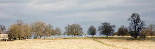 Landscape of Richmond Park Stock Images