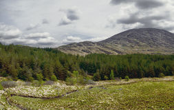 Landscape the Ring of Kerry in Ireland Stock Photography