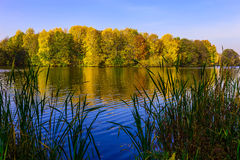 Landscape with River and Colourful Trees in Autumn Time Royalty Free Stock Photos