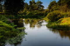 Landscape with the river creek Stock Photo