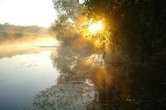 Landscape with river at early morning time Stock Image