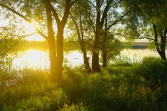 Landscape with river at early morning time Royalty Free Stock Photos