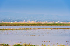 Landscape river Ebro Delta in Spain, Tarragona, Catalunya. Copy space for text. Royalty Free Stock Photography