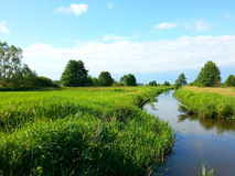 Landscape on the river. Every day unnoticed beauty of small things Stock Photo