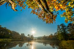 Landscape of river and forest in fall. Season, sunrise time royalty free stock photography
