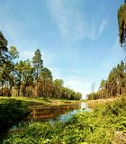 Landscape, river, forest panorama Royalty Free Stock Images