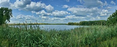 Landscape, river, forest panorama Stock Photography