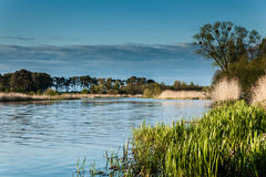 Landscape on the river Nogat Royalty Free Stock Photography