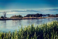 Landscape on the river Nogat, spring, Poland Royalty Free Stock Image