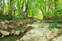 Landscape of river, rocks and green trees Royalty Free Stock Photo
