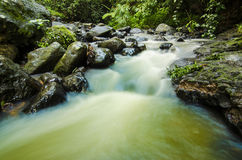 Landscape of the river with rocks in the jungle. Stock Photo