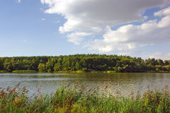 Landscape with river and trees Royalty Free Stock Photos