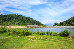 Landscape of riverbank with group bamboo Royalty Free Stock Photos
