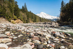 Landscape of riverbed with Mountain Rainier background. Stock Image