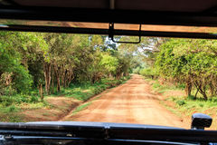 Landscape with road from car in Yala National Park Stock Images