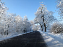 Landscape and Road covered in snow in a winter Stock Images