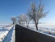 Landscape and Road covered in snow in a winter Stock Photos