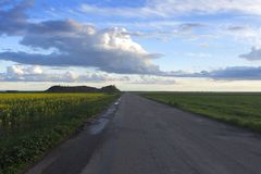 Road with rapeseed fields, with a cloudy sky at sunset. stock photos