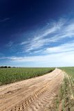 Road leading through a field Royalty Free Stock Images