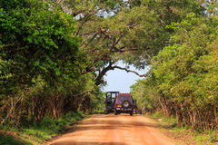 Landscape with road and SUVs in Yala National Park royalty free stock photography